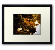 Duck House England Framed Print