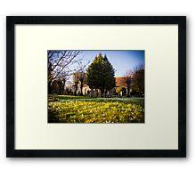 Snowdrops in Kintbury England Framed Print