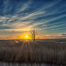 The evening in Eempolder by THHoang