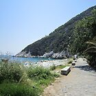 Greece near Mount Pelion by Eleanor11