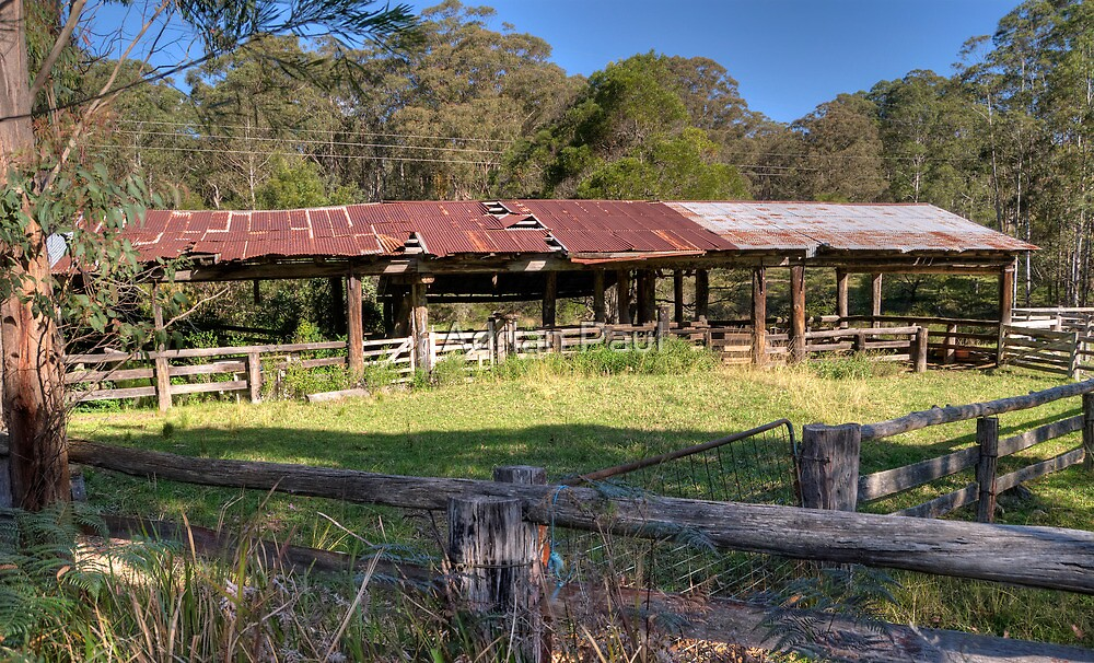 The Milking Shed, Tyringham NSW by Adrian Paul