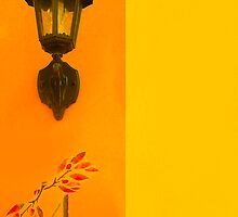 House Number 4 by EvaMarIza