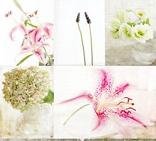 Collage Flowers by Feli Caravaca