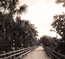 South Beach Boardwalk by erinv2000