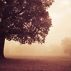 September by redtree