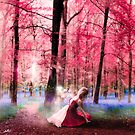 Enchanted Forest by redtree