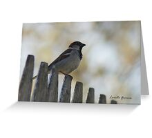 Taking A Moment Greeting Card