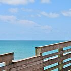 Sharkey's Fishing Pier, Venice, FL by Ginger  Hamilton
