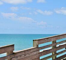 Sharkey's Fishing Pier, Venice, FL by Ginger  Hamilton