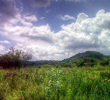 ©MS Zona Rural Mexicol I by OmarHernandez
