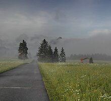 Alpine Dawn by Kasia-D