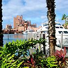 Atlantis Paradise Island, The Bahamas by Ginger  Hamilton