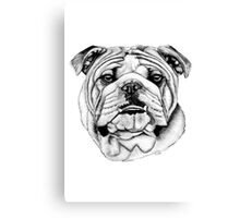 The British Bulldog Canvas Print