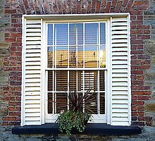 Blinds And Shutters by Fara
