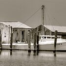 Bay Crab Shanty's  by Monte Morton
