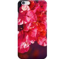 Petal Pink iPhone Case/Skin