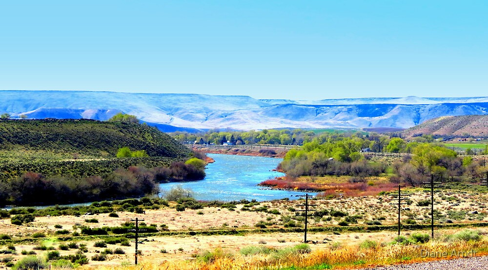 Snake River...King Hill, Idaho by Diane Arndt