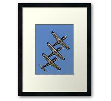 TB 30 Epsilons of the Cartouche Dore Framed Print