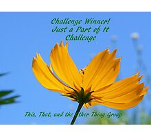 Banner for challenge Winner - Just A Part of It Photographic Print