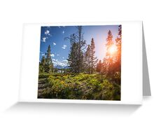 Grand Teton Field of Flowers Greeting Card