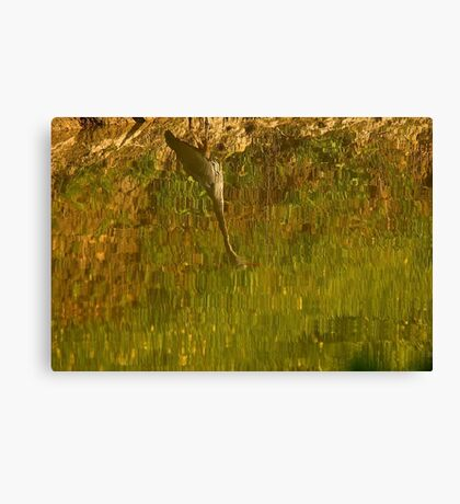 Abstract on the Pond Canvas Print