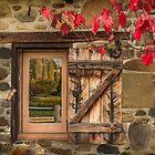 Autumn Window, Lavendula, Daylesford, Victoria by Julie Begg