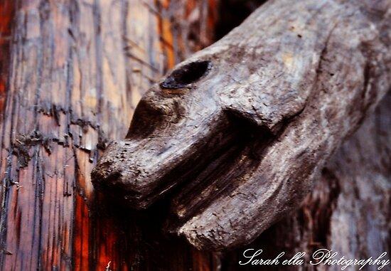 monster wood by Sarah Ella Jonason