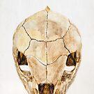 Island Bone Icon by modernlifeform