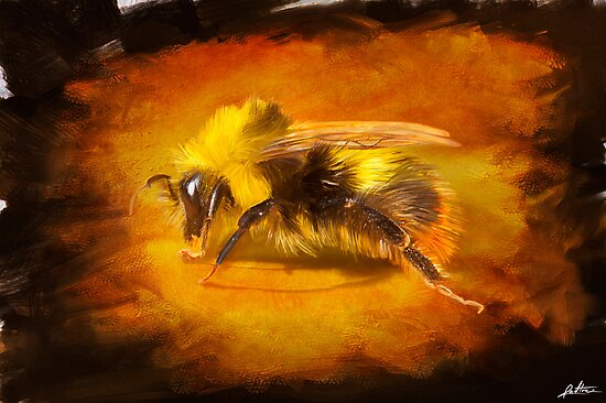 Bumblebee by redtree