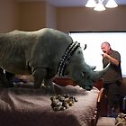 Bad Rhino! by Randy Turnbow