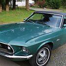 My Mustang by skreklow