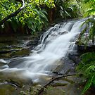 cascades by peter jackson