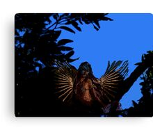 Angel with blue sky. Canvas Print