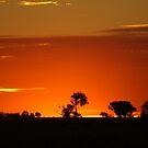 Sunset 2 by waynepearce