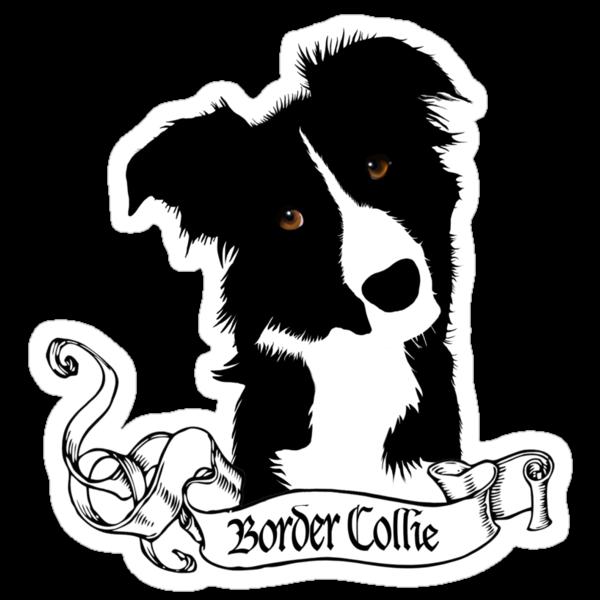 Border Collie by BrightBrownEyes