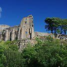 Barnard Castle by Francis Drake