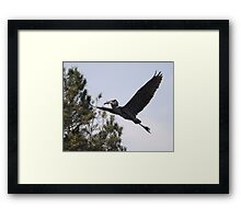 Successful Day of Fishing Framed Print