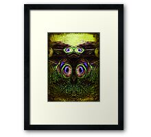 Mirrored experiment Framed Print