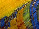 Iron Rainbow (Tiger Eye) by Stephanie Bateman-Graham