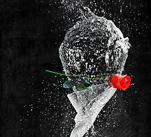In the land of the Water Balloon People, Pete becomes a hopeless romantic after trying to woo the ladies with a long a stemmed rose. by redtree