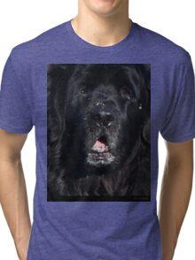 Bottlemutt Tri-blend T-Shirt