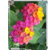 Nature Inspired ipad Case iPad Case/Skin