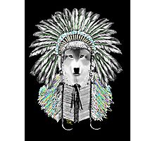Indian chief wolf  Photographic Print
