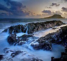 Coastal Mementos - Rhosilli by redtree