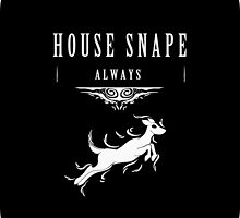 House Snape by Macaluso