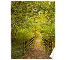 Wakerly Woods, Northamptonshire Poster