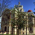 Coryell County Courthouse by Terence Russell