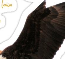 Dougherty Iowa Eagles 3 Sticker