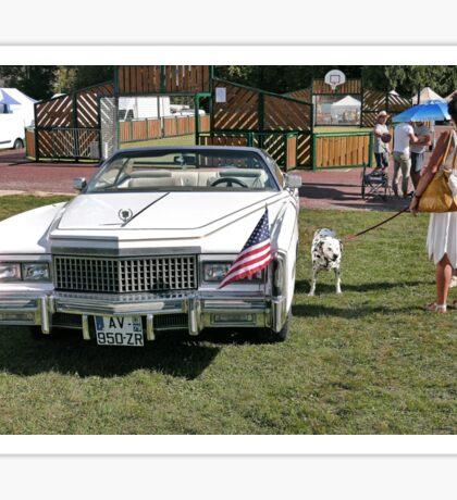 Beautiful American car  11(c)(t) by Olao-Olavia / Okaio Créations with fz 1000  2014 Sticker