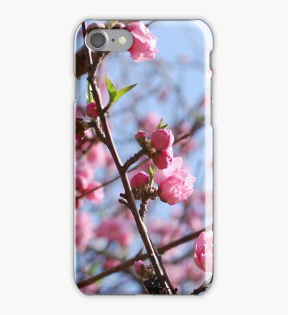 Cherry Blossom Cheer iPhone Case/Skin